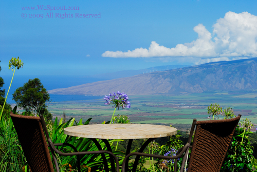 Spa and Resort Photography in Maui